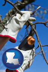 louisiana map icon and a tree being trimmed with pruning shears