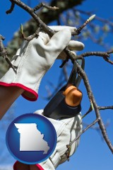 missouri map icon and a tree being trimmed with pruning shears