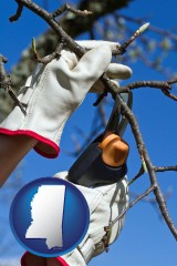 mississippi map icon and a tree being trimmed with pruning shears