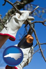 north-carolina map icon and a tree being trimmed with pruning shears