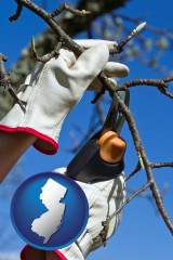 new-jersey map icon and a tree being trimmed with pruning shears