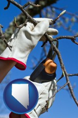 nevada map icon and a tree being trimmed with pruning shears