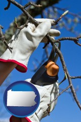 pennsylvania map icon and a tree being trimmed with pruning shears