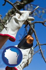 wisconsin map icon and a tree being trimmed with pruning shears